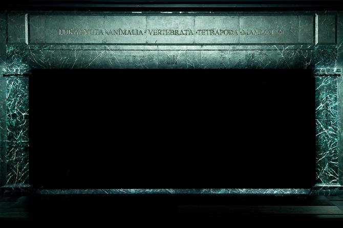 Il velo nero del Pastore (foto di Giulia Fedel).