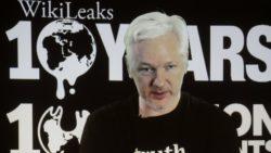 Verità: le ha diffuse Julian Assange.