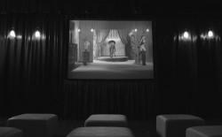 Il cinema da camera di Zapruder